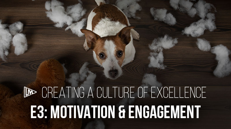 Creating a Culture of Excellence 3: Motivation & Engagement